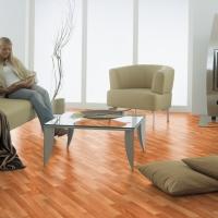 Vas a comprar o compraste tu nuevo apartamento? Quieres renovarlo y darle un nuevo look ya...? Te ofrecemos los mejores pisos de madera laminada alemanes. De instalación rápida